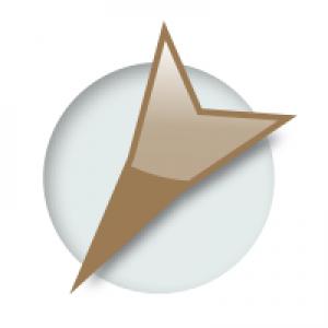 Beezix Software Services