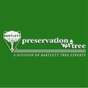 Preservation Tree