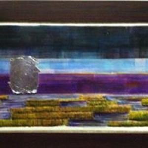 Ann Nicole Gallery
