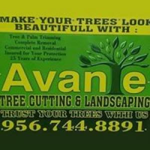 Avante Tree Service