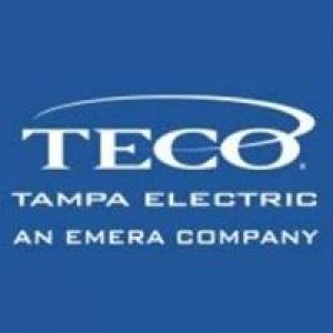 Tampa Electric Regulatory