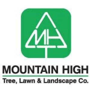 Mountain High Tree