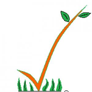Accent Estates Tree Experts