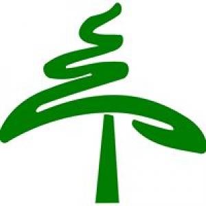 ReAction Tree Service