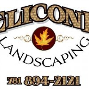 Elicone Landscaping