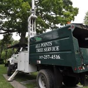 All Points Tree Service