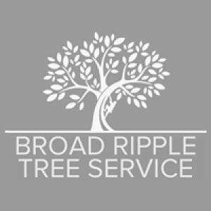 Broad Ripple Tree Service Inc