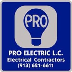 Pro Electric