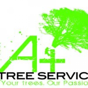 A Plus Tree Services