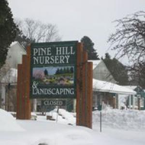 Pine Hill Nursery At Village Gardens