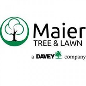 Maier Forest & Tree