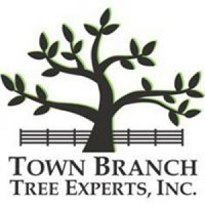 Town Branch Tree Experts
