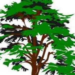 Dail's Tree Service