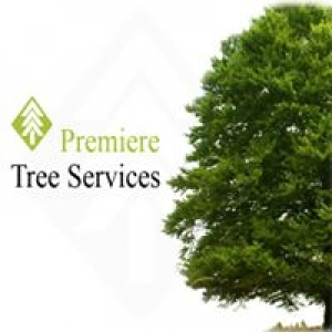 Premiere Tree Services of Birmingham