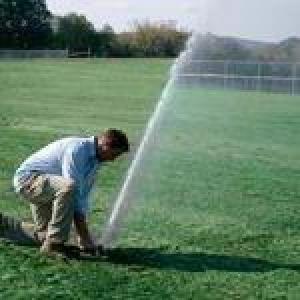 Morris and Bergen Irrigation
