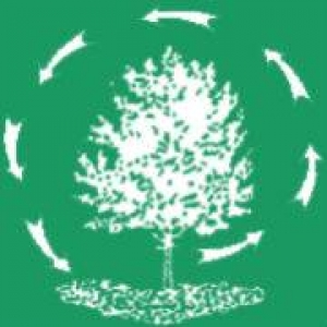 Romer Brothers Tree & Shrub Service