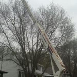 Gardner Tree Service