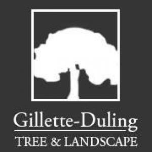 Gillette Duling Tree Landscape