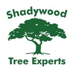 Shadywood Tree Experts Inc