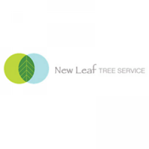 Maple Leaf Tree Service