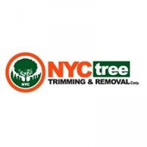 NYC Tree Trimming