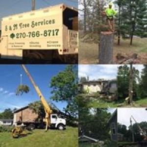 S & M Tree Services