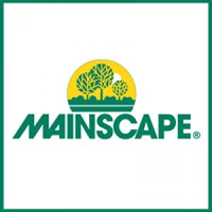 Mainscape Inc