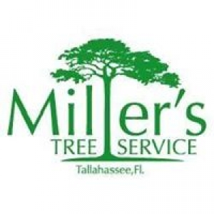 Miller's Tree Service