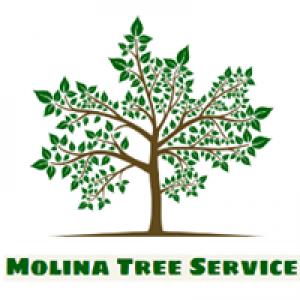 Molina Tree Service
