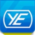 Young Electric Inc.