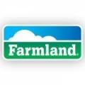 Farmland Hog Buying Station