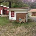 Carrie's Dog House