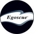 Egoscue Chicago