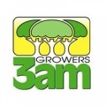3am Growers