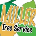 Miller Tree Service