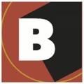 Bonelli E A & Associates Inc