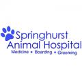 Springhurst Animal Hospital