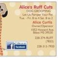 Cuts Alices Ruff