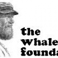 The Whale Foundation