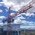 Rms Cranes