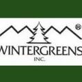 M & M Wintergreens