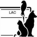 Larchmont Animal Clinic