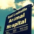East Louisville Animal Hospital