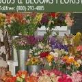 Buds & Blooms Florist
