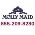 MOLLY MAID of Northwest New Castle County