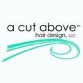 A Cut Above Salon
