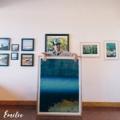 Casco Bay Frames