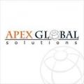 Apex Global Solutions