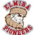 Elmira Amateur Baseball LLC