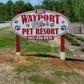 Wayport Kennels